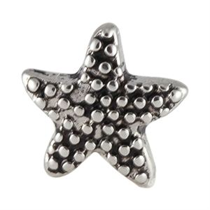 Picture of Starfish Charm